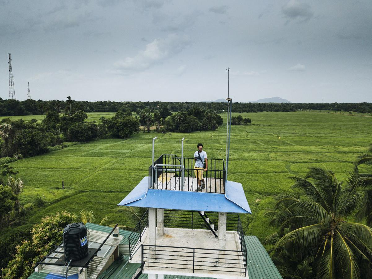 Where to Stay in Anuradhapura: Heaven Upon Rice Fields