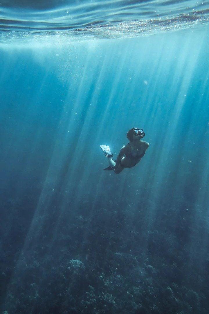 Hapuna Beach snorkelling trip