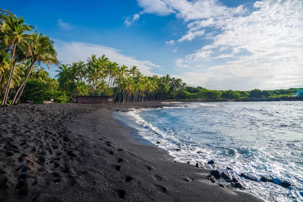 Punaluu Black Sand Beach Hawaii Island