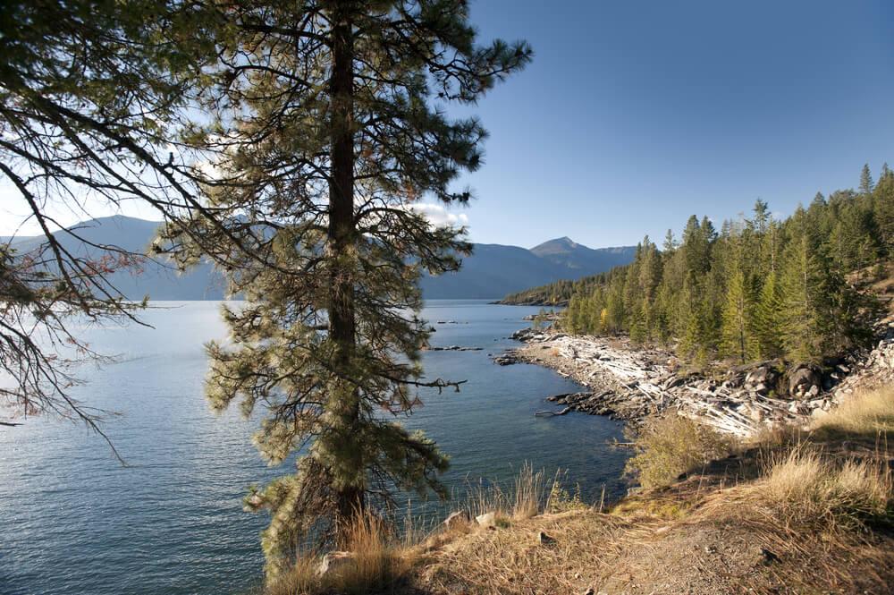 Lake Kootenay