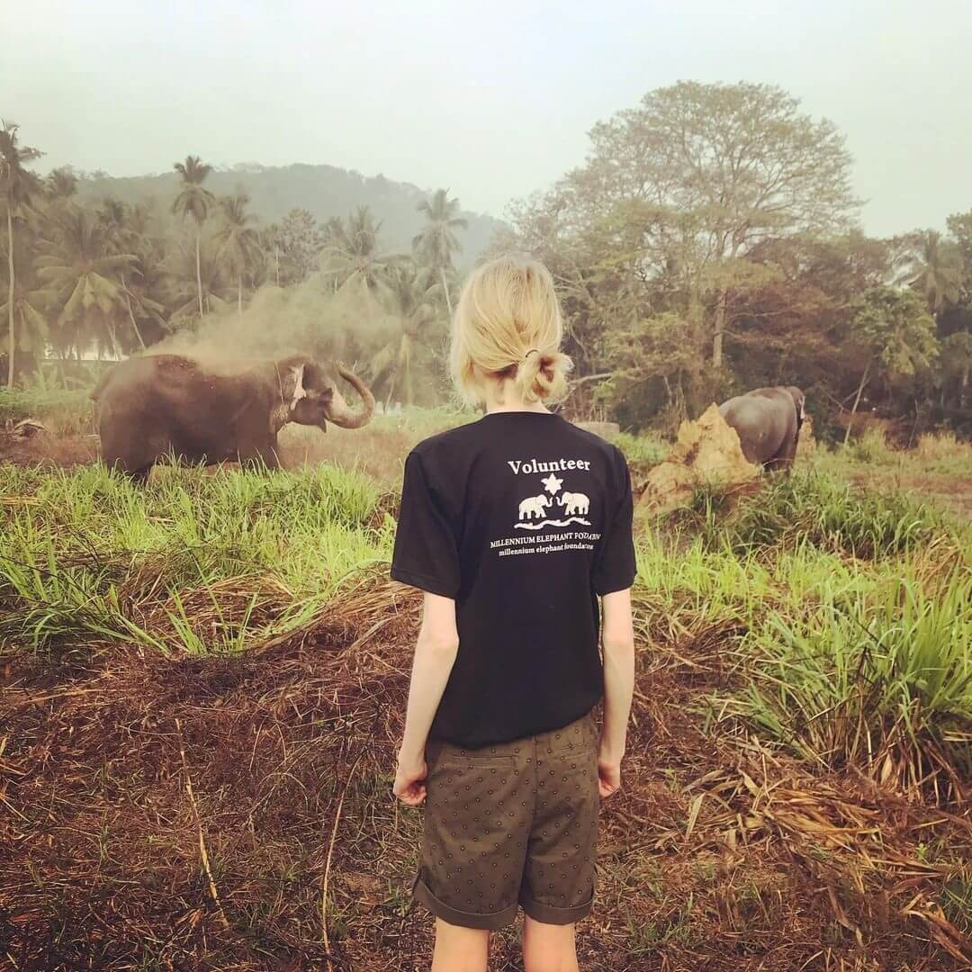 Tourist volunteering at an elephant orphanage in Sri Lanka