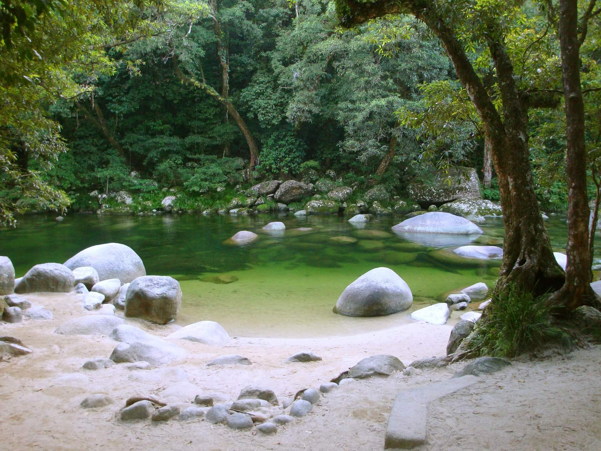 Mossman Gorge, Daintree Rainforest - one of Queensland's best national parks