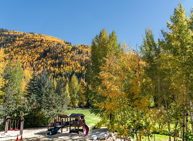 East Vail, Vail