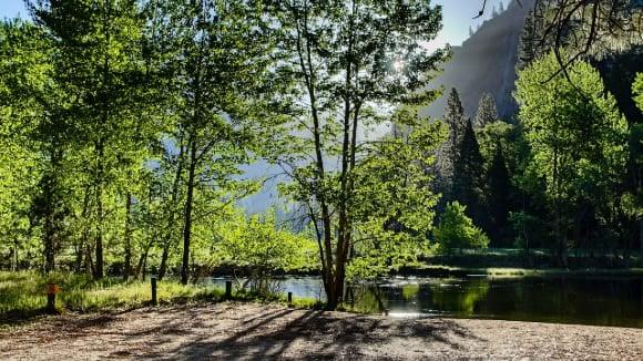 Mariposa, Yosemite 1