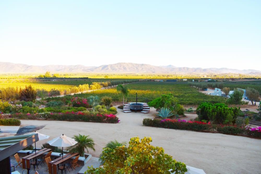 Valle de Guadalupe Ensenada