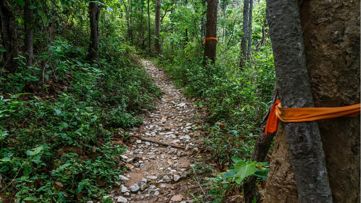 Doi Suthep Monk Trail The Best Day Hike in Thailand