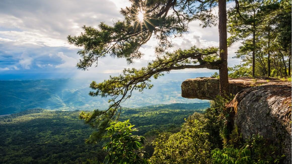 Phu Kradueng The Best Multi Day Hike in Thailand