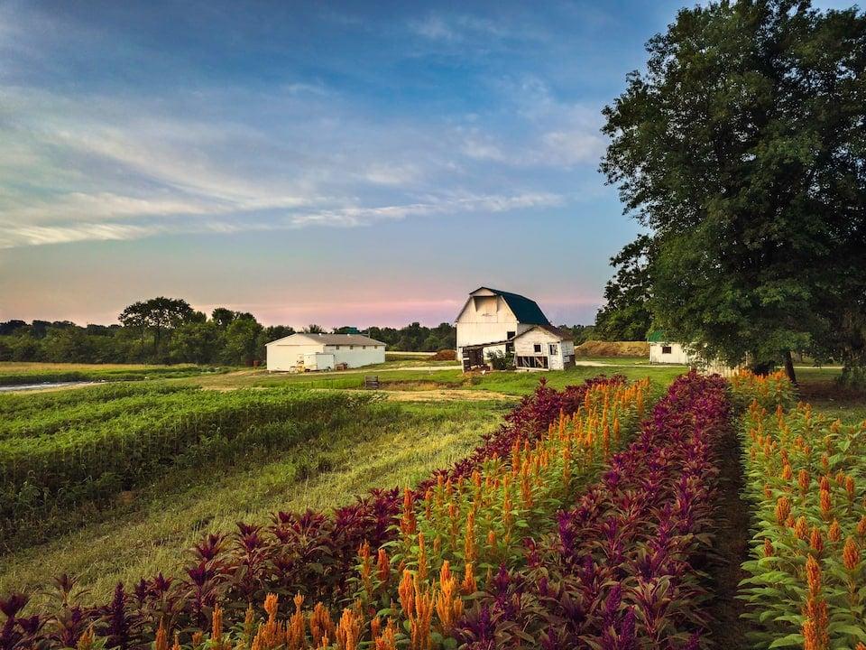 The Farmhouse at Hotel Tango Farms Indianapolis