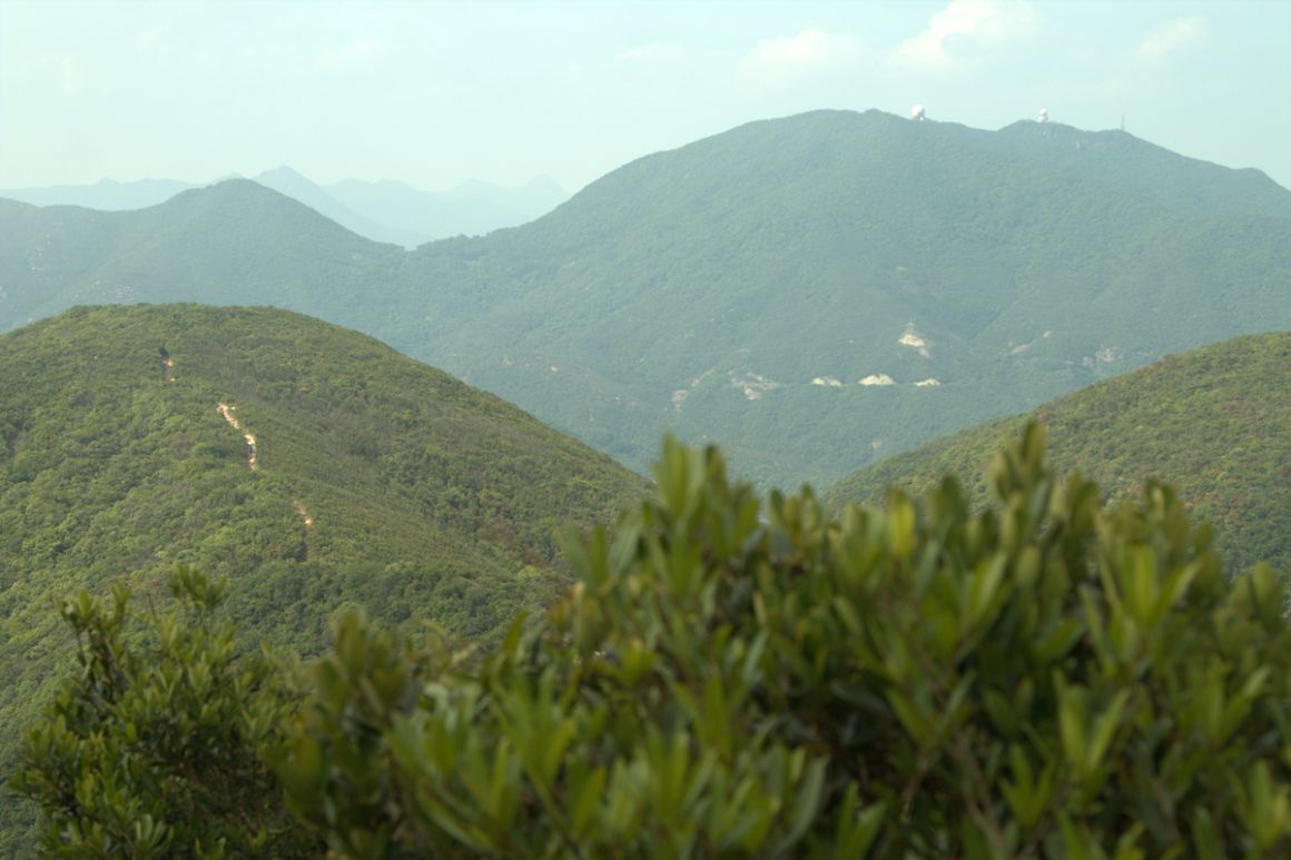 Twin Peaks Hong Kong