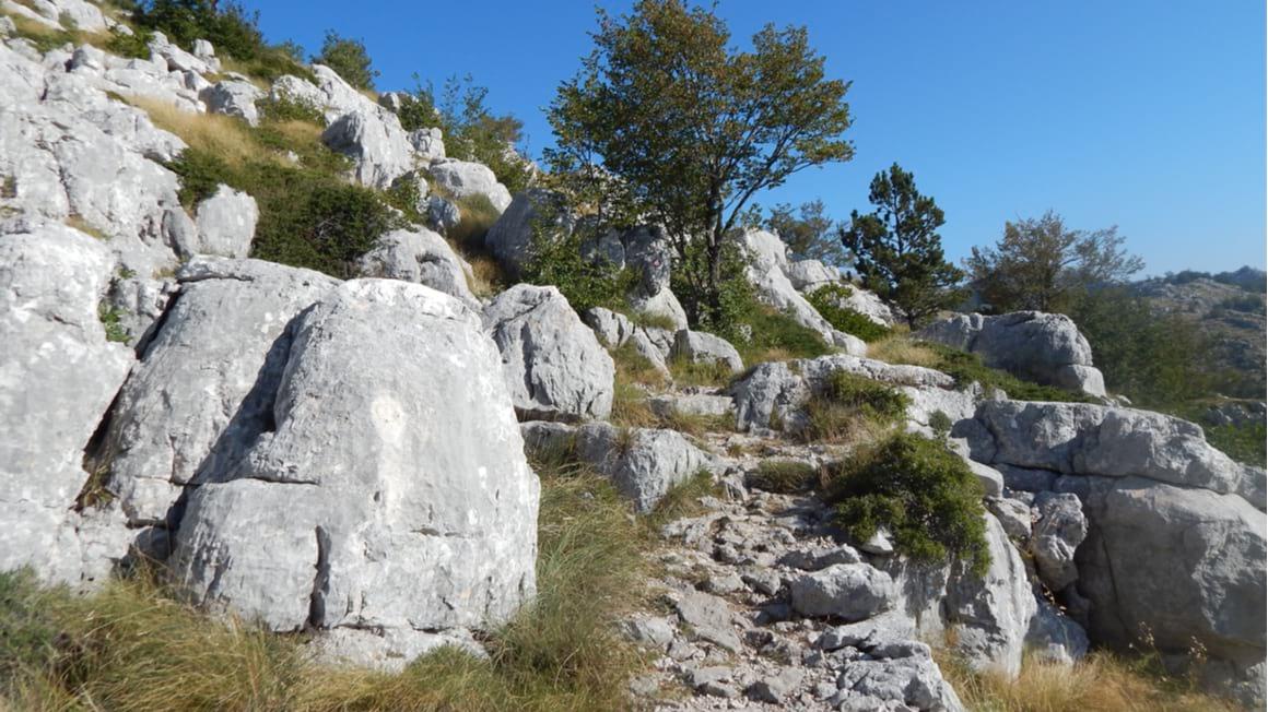 Vosac Peak Hike The Toughest Trek in Croatia