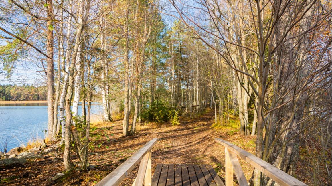 Pohjantikan Kierros A Fun Easy Hike in Finland