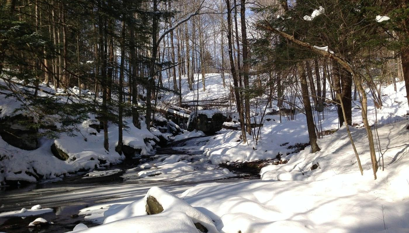 Things to See and Do in Windham