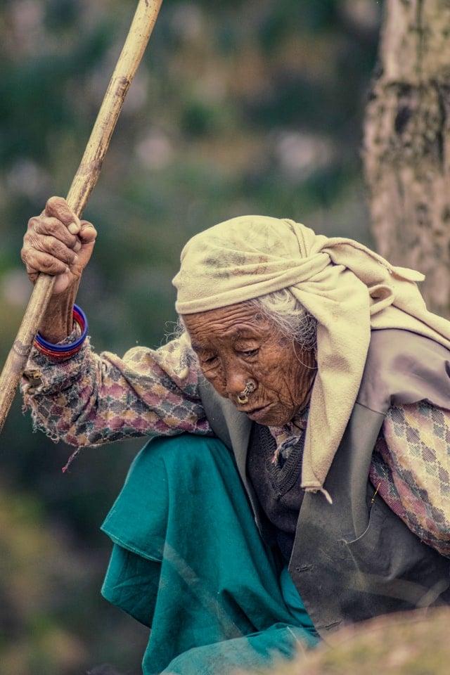 Old Nepali woman in rural Nepal tending to livestock
