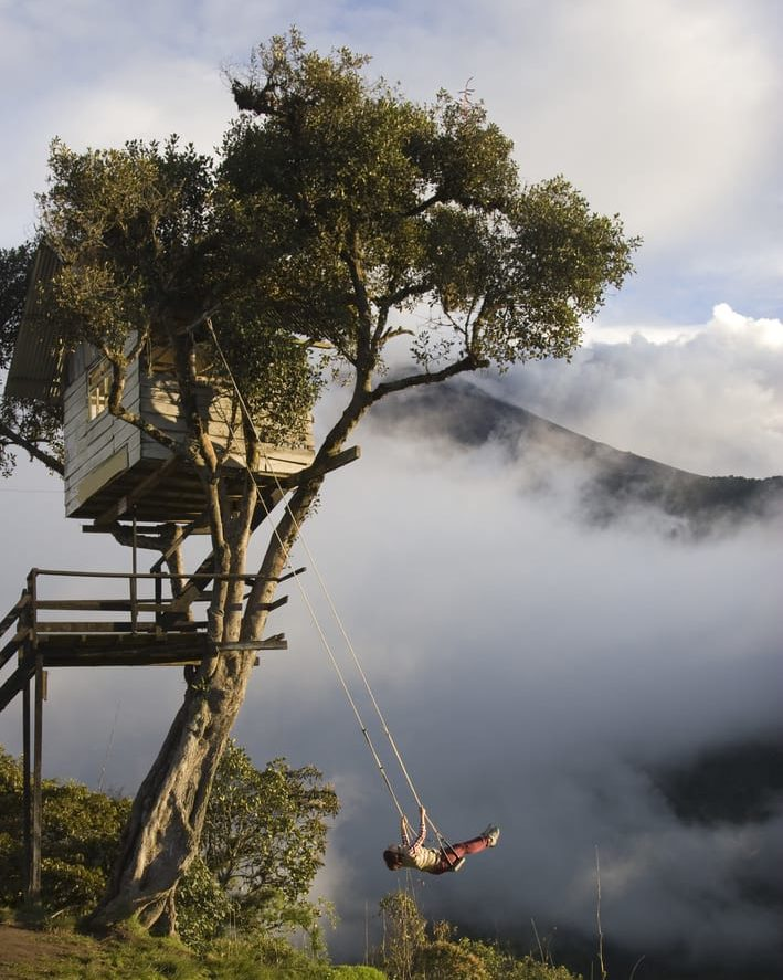 guy swinging in the jungle in ecuador