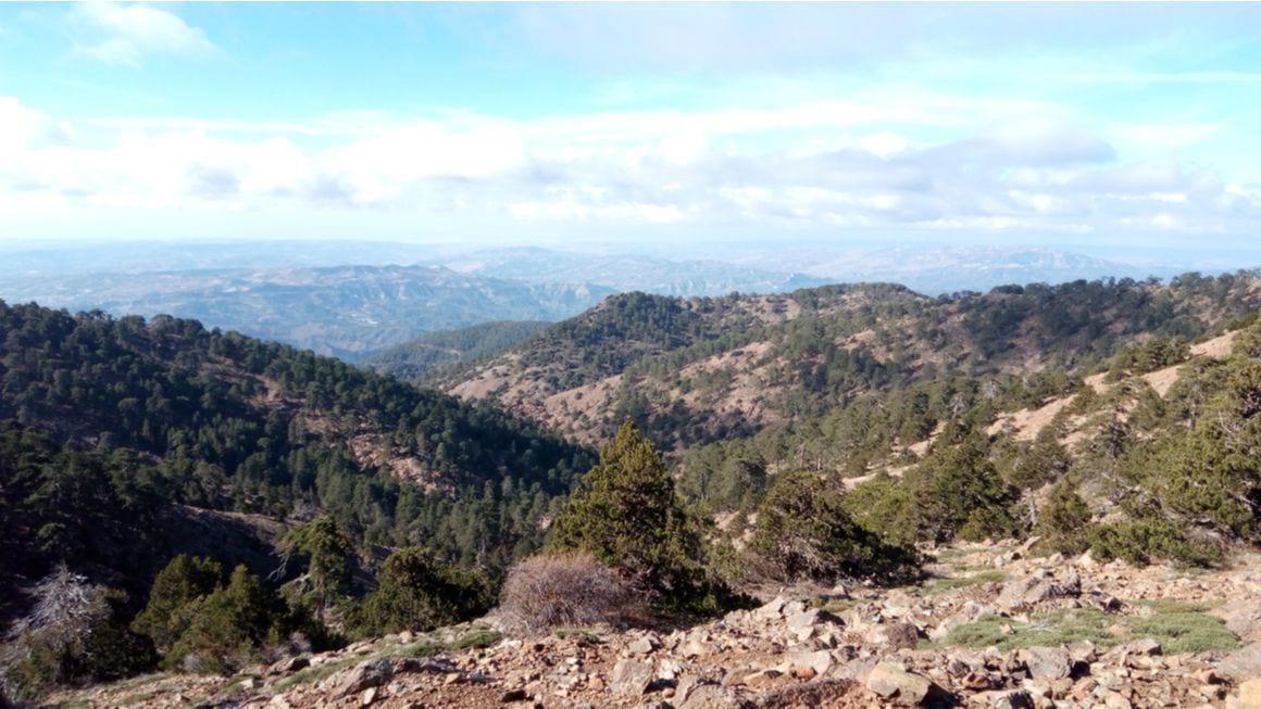 Artemis Trail Cyprus