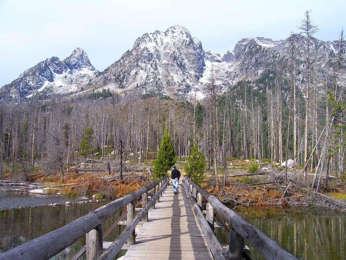 Grand Teton National Park Trail Safety