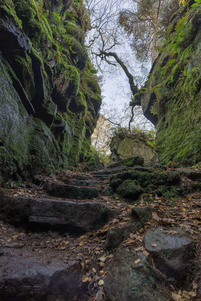 Lud's Church Trail Peak District