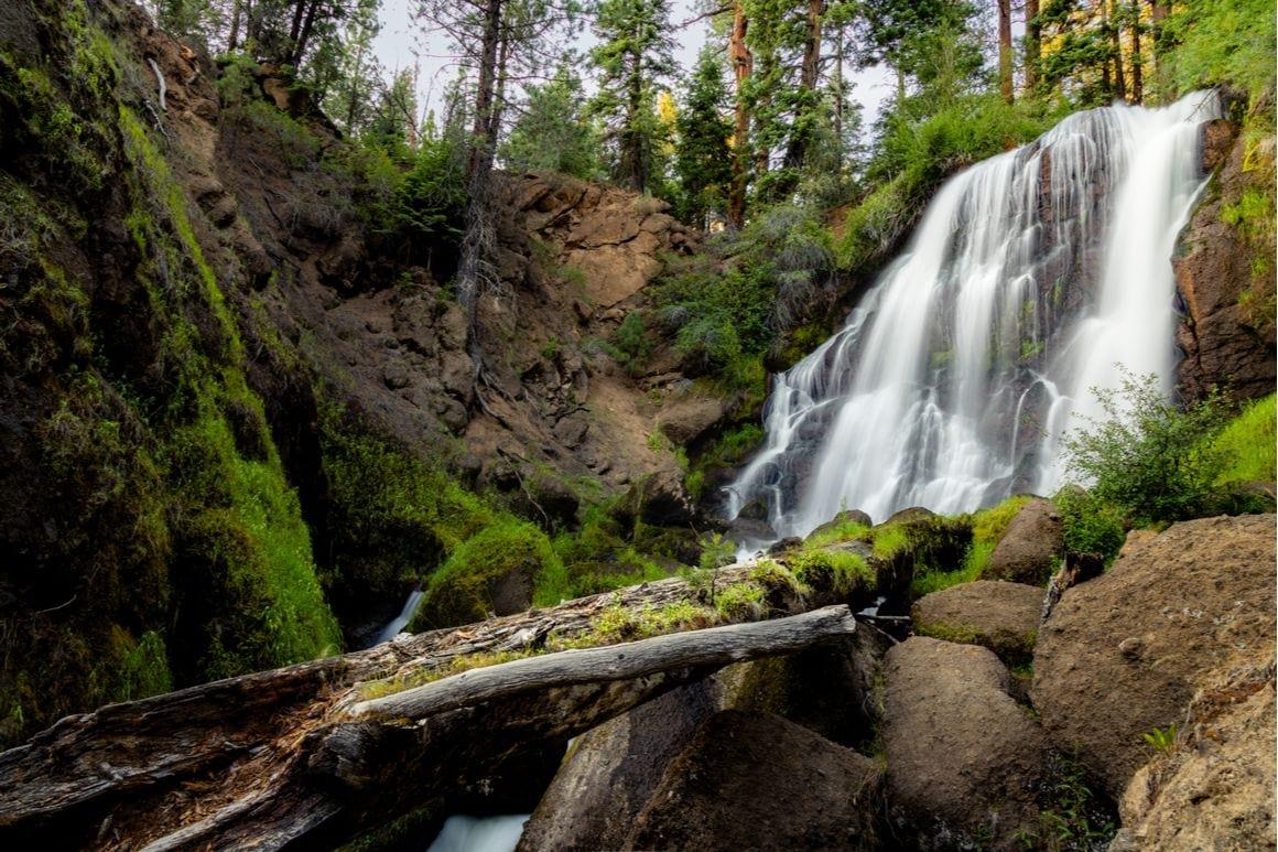 Mill Creek Horse Trail Redwoods