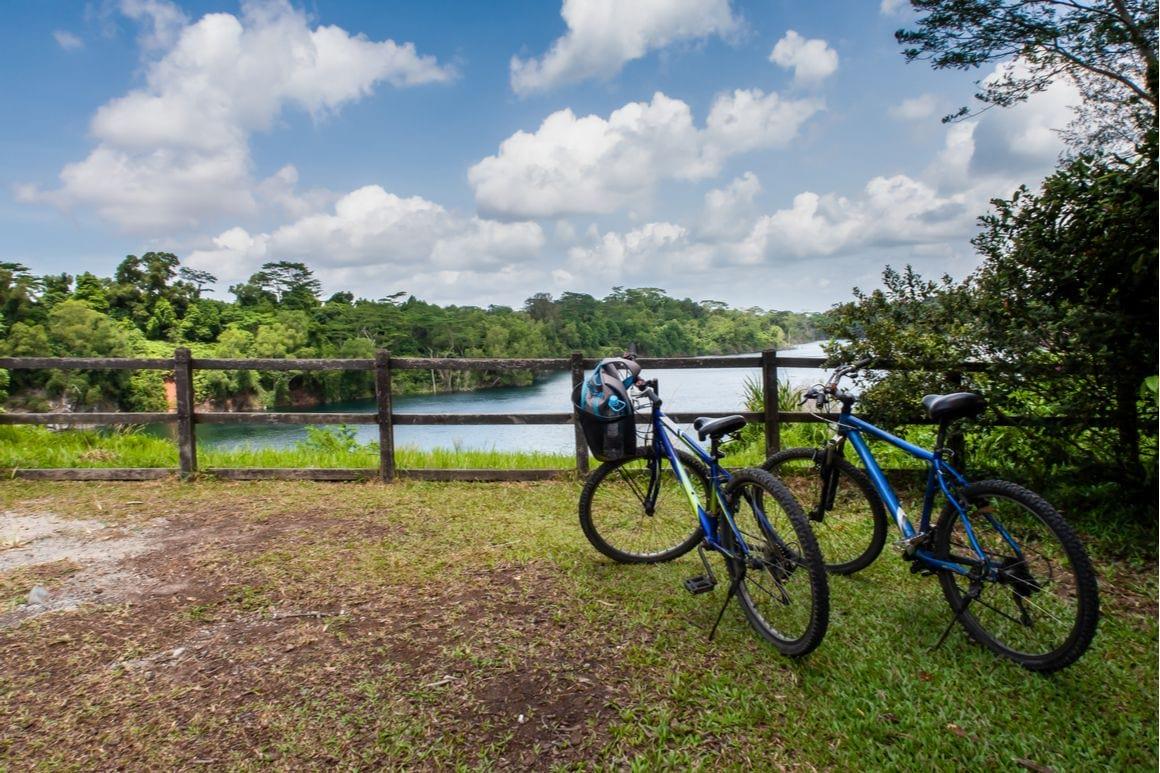 Pulau Ubin Tree Trail Singapore