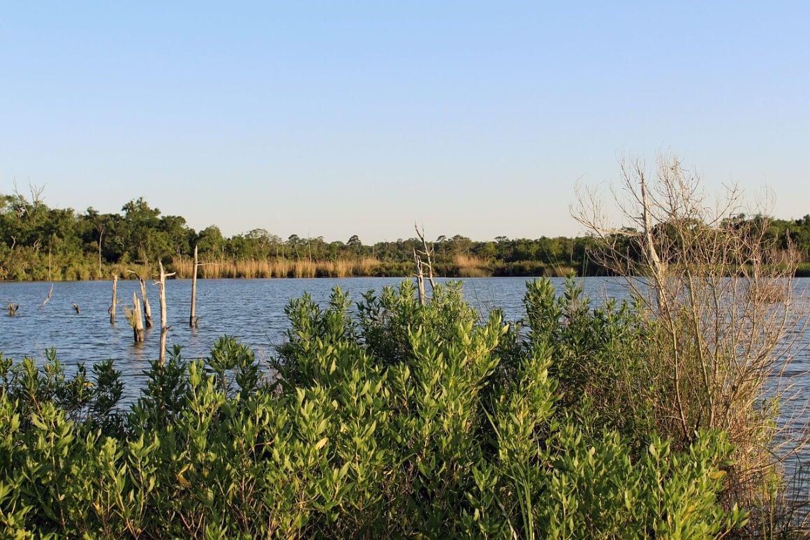 Huntsville State Park, San Antonio