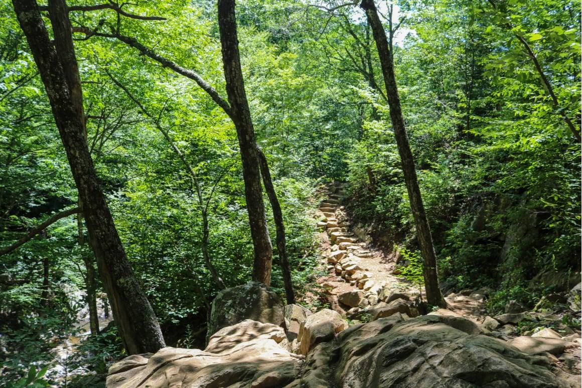 Rose River Trail, Shenandoah