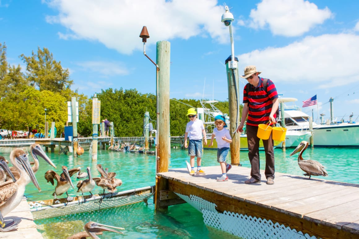 Things to See and Do in Plantation Key