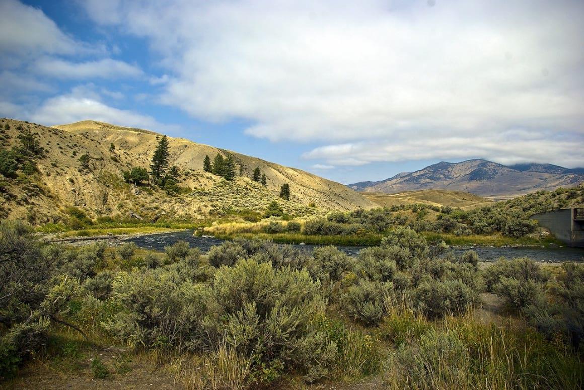 Osprey Falls Trail, Yellowstone