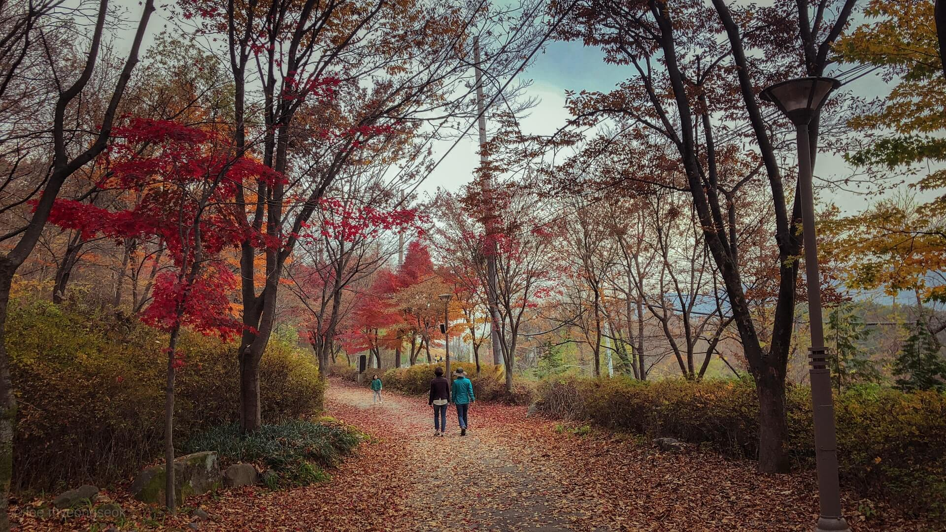 Two travellers in South Korea walking through one