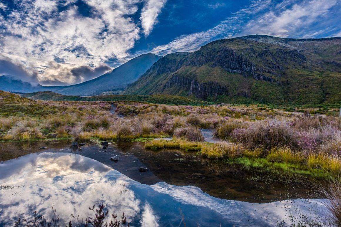 Tongario Alpine Crossing, New Zealand