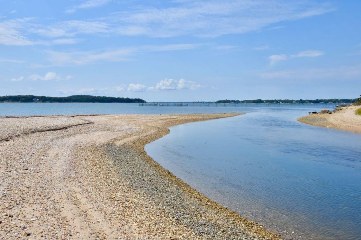 Joan C. Coles Loop - The Best Day Hike in Long Island
