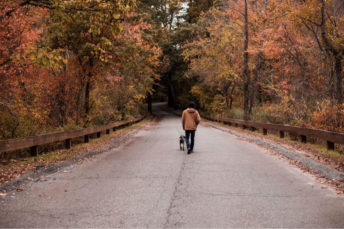 Long Island Trail Safety