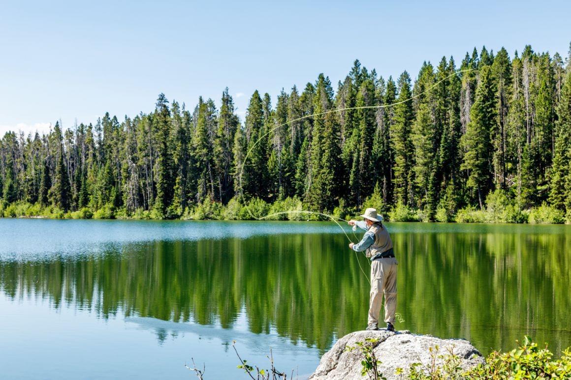 Phelps Lake Loop - Most Beautiful Hike in Grand Teton National Park