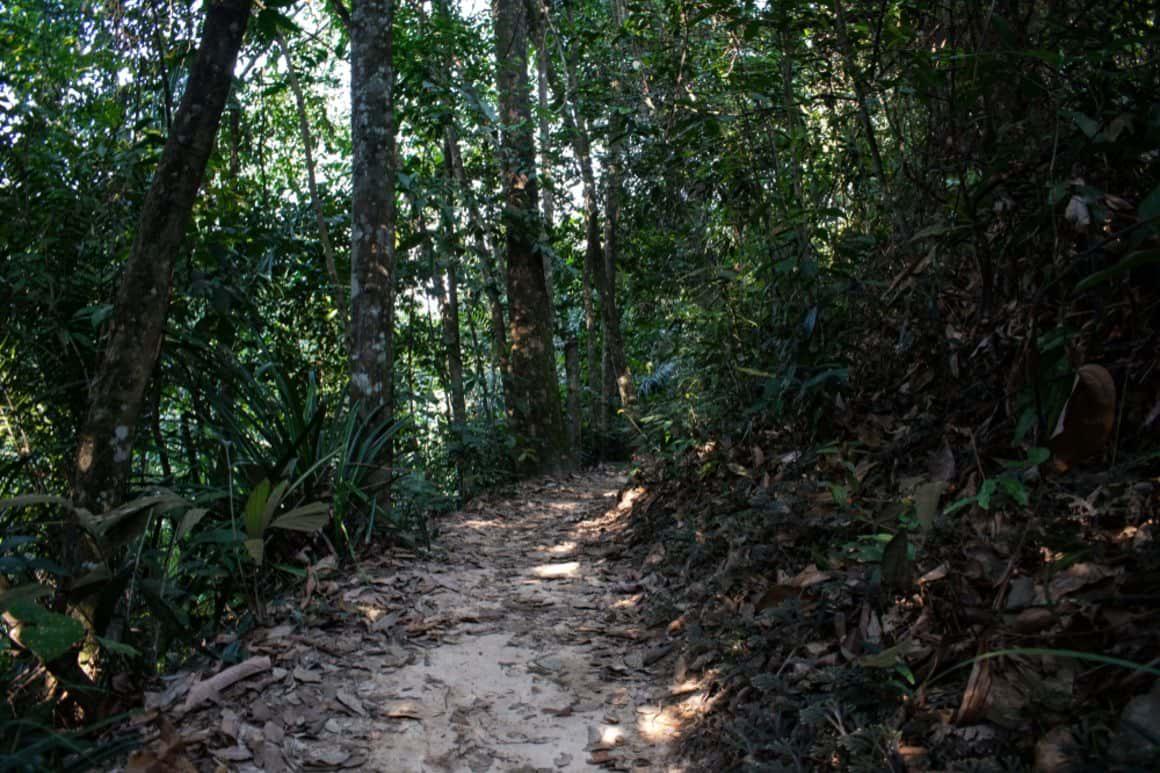 Gasing Hill Hike, Malaysia