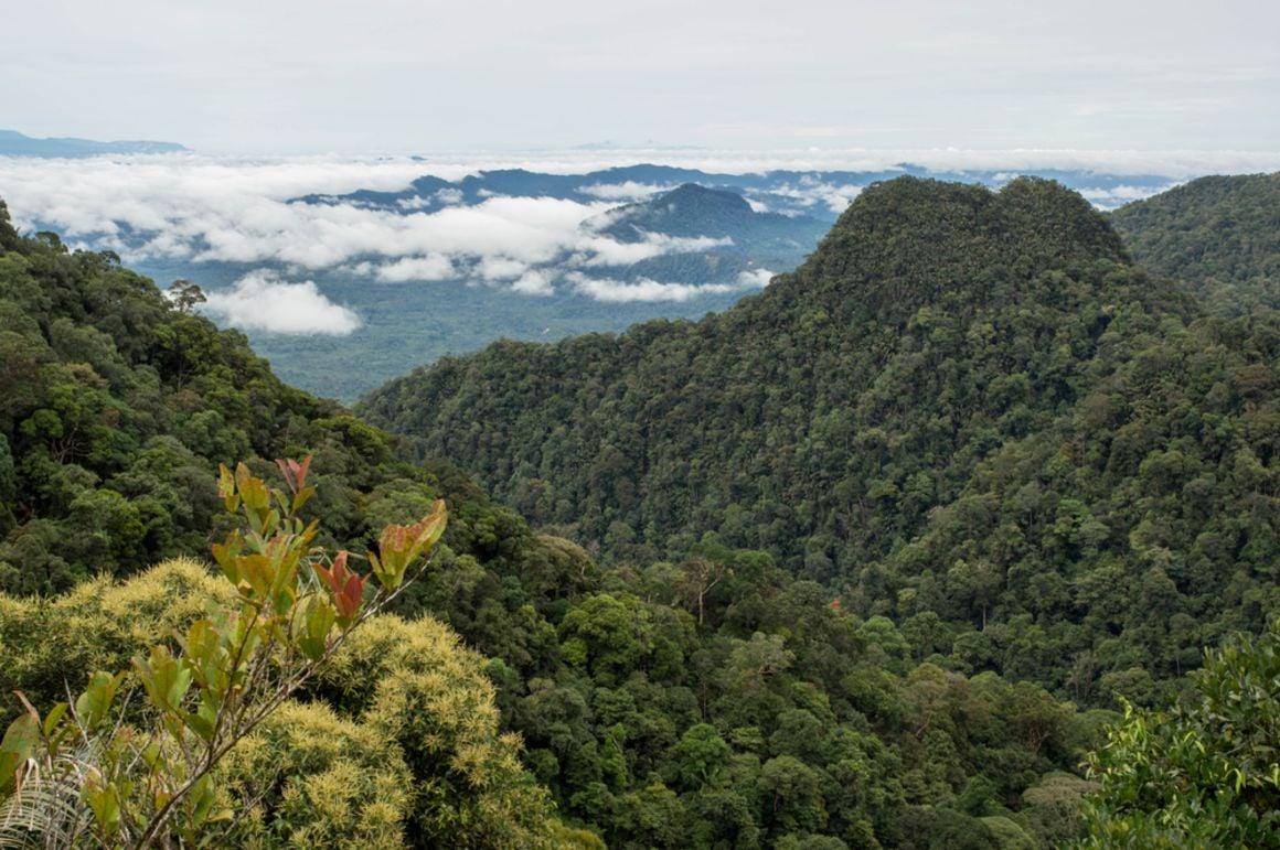 Mount Serapi Hike, Malaysia