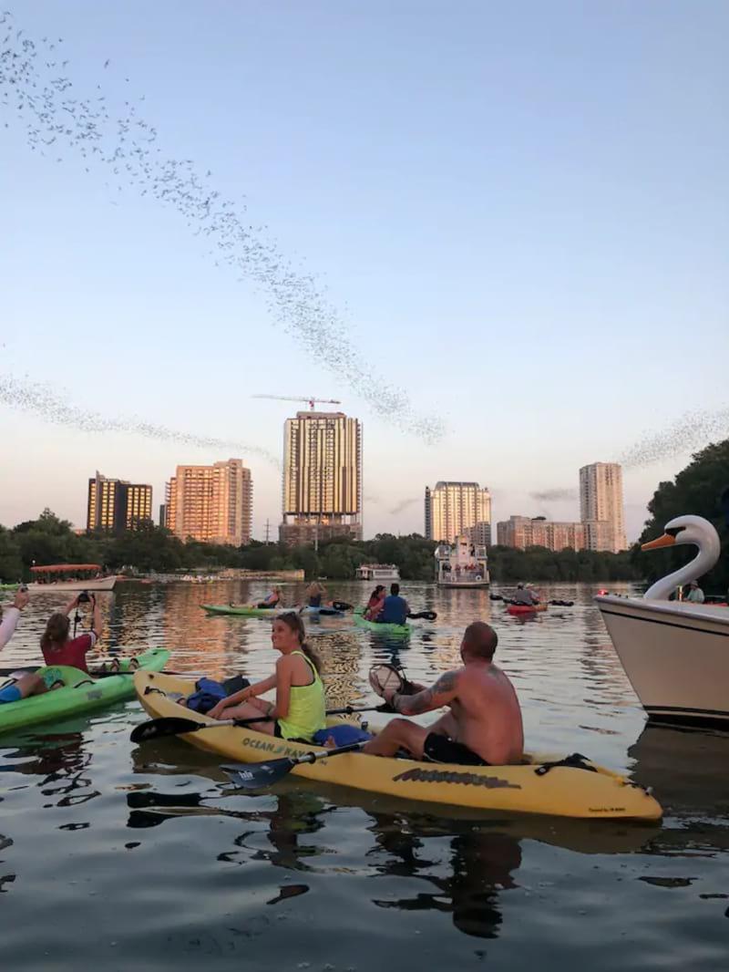 Downtown Sunset Kayak with 1.5m bats