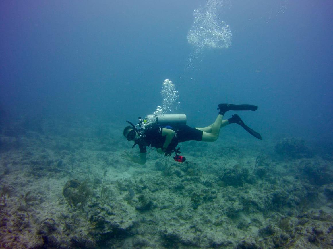 Islamorada, Florida Keys 2