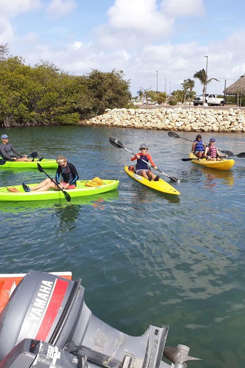 See the southeast of Aruba by kayak Aruba