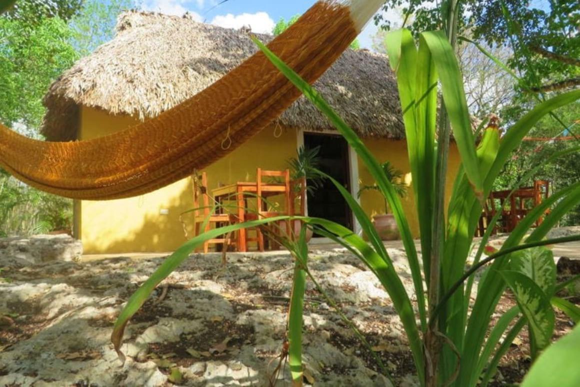 Xkopek Native Bee Farm Camping Mexico