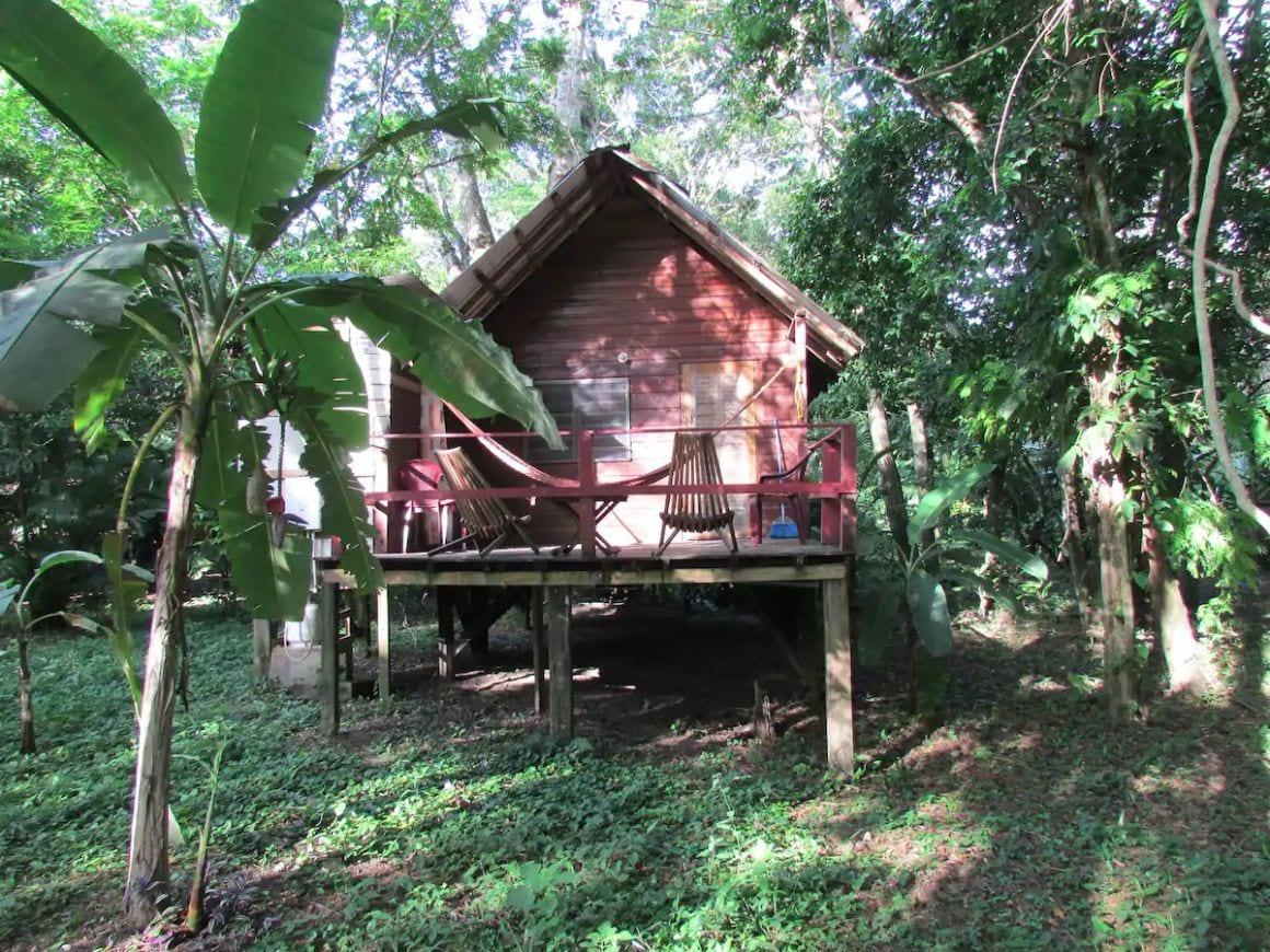 Parrot Nest Family Cabin Belize
