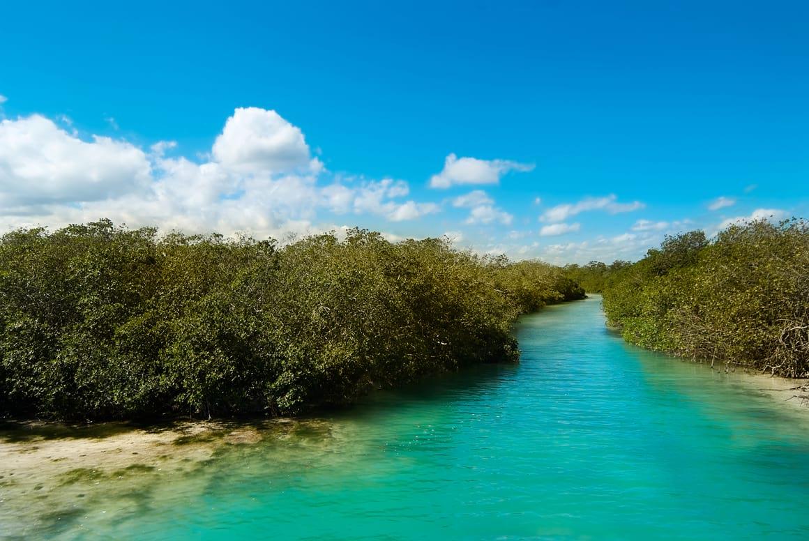 Sian Kaan Biosphere Reserve Cancun