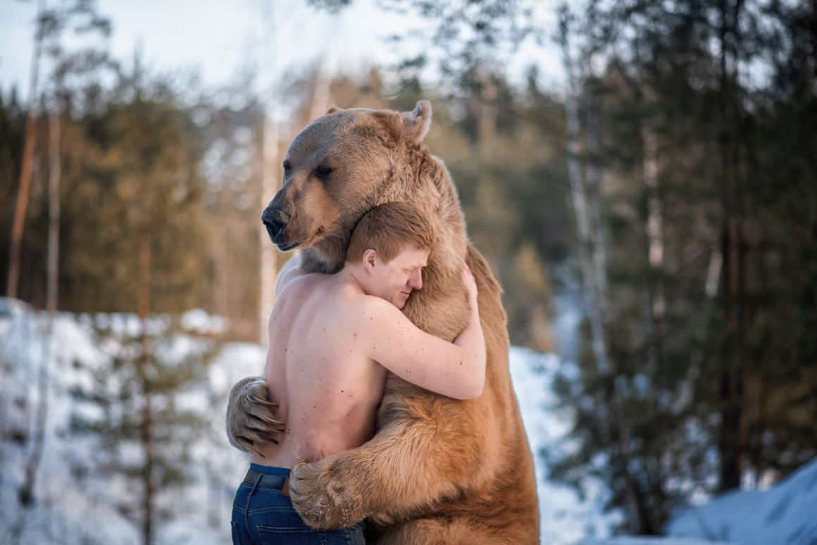 A volunteer hugs a brown bear at a conservation project