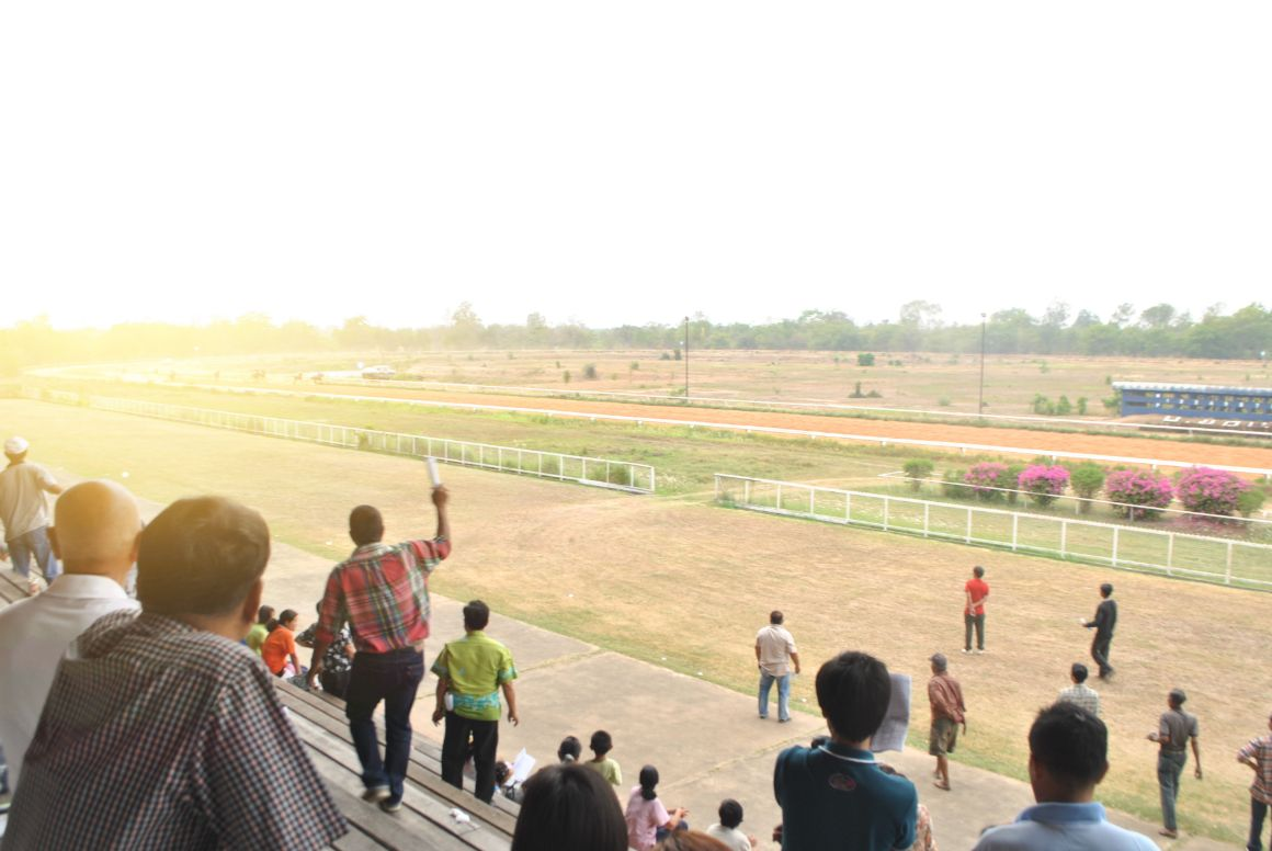 attend the races