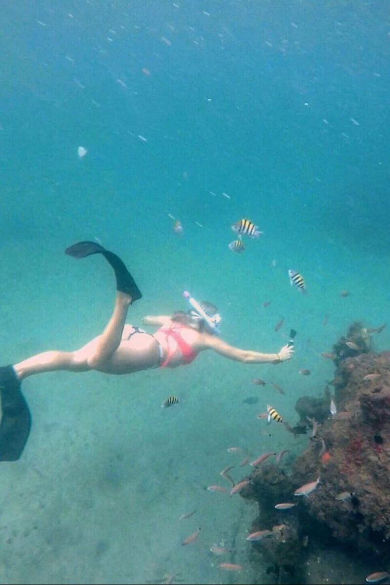 Snorkel Experience at Phil Foster Park Florida