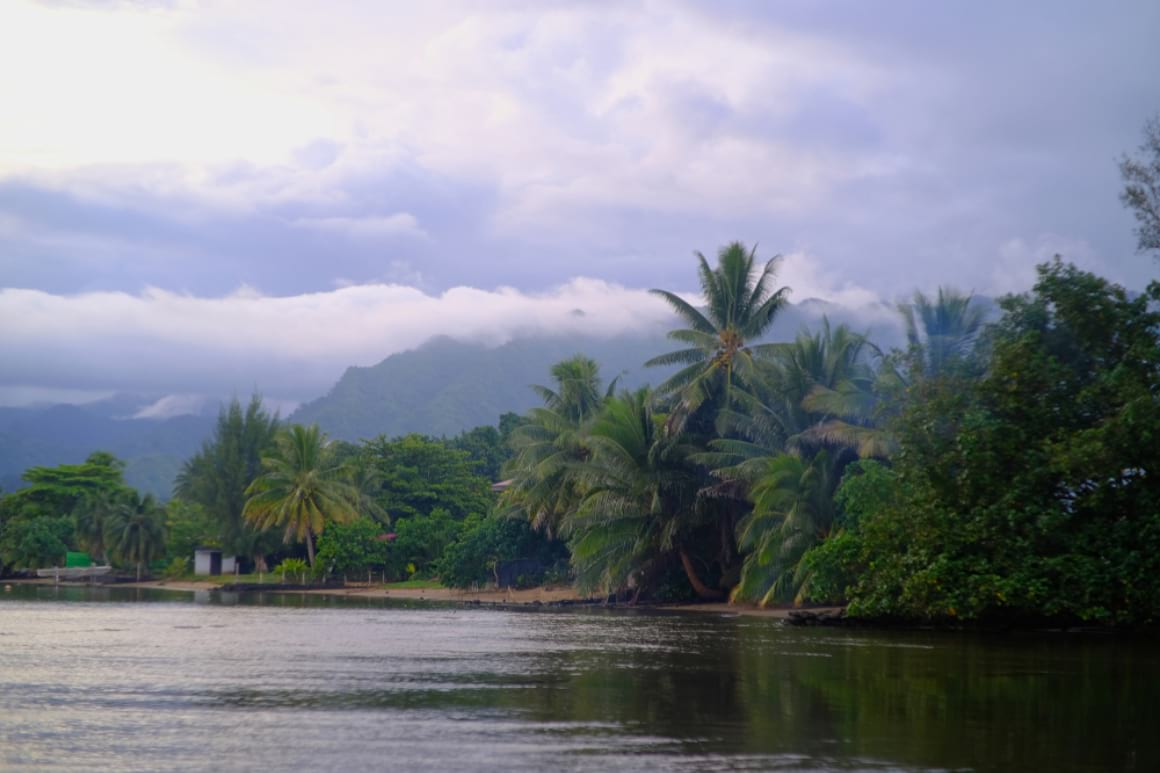 Tahiti Nui 2