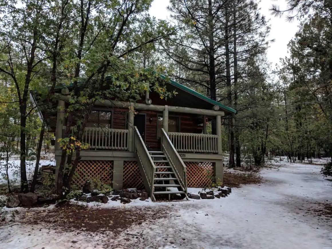 Cozy Cub Log Cabin