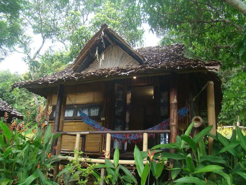 Re-wild House