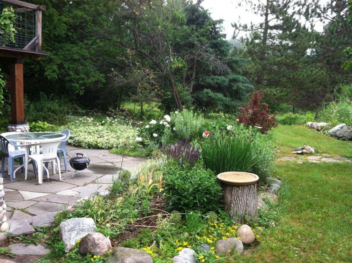 Rhubarbary BB Michigan