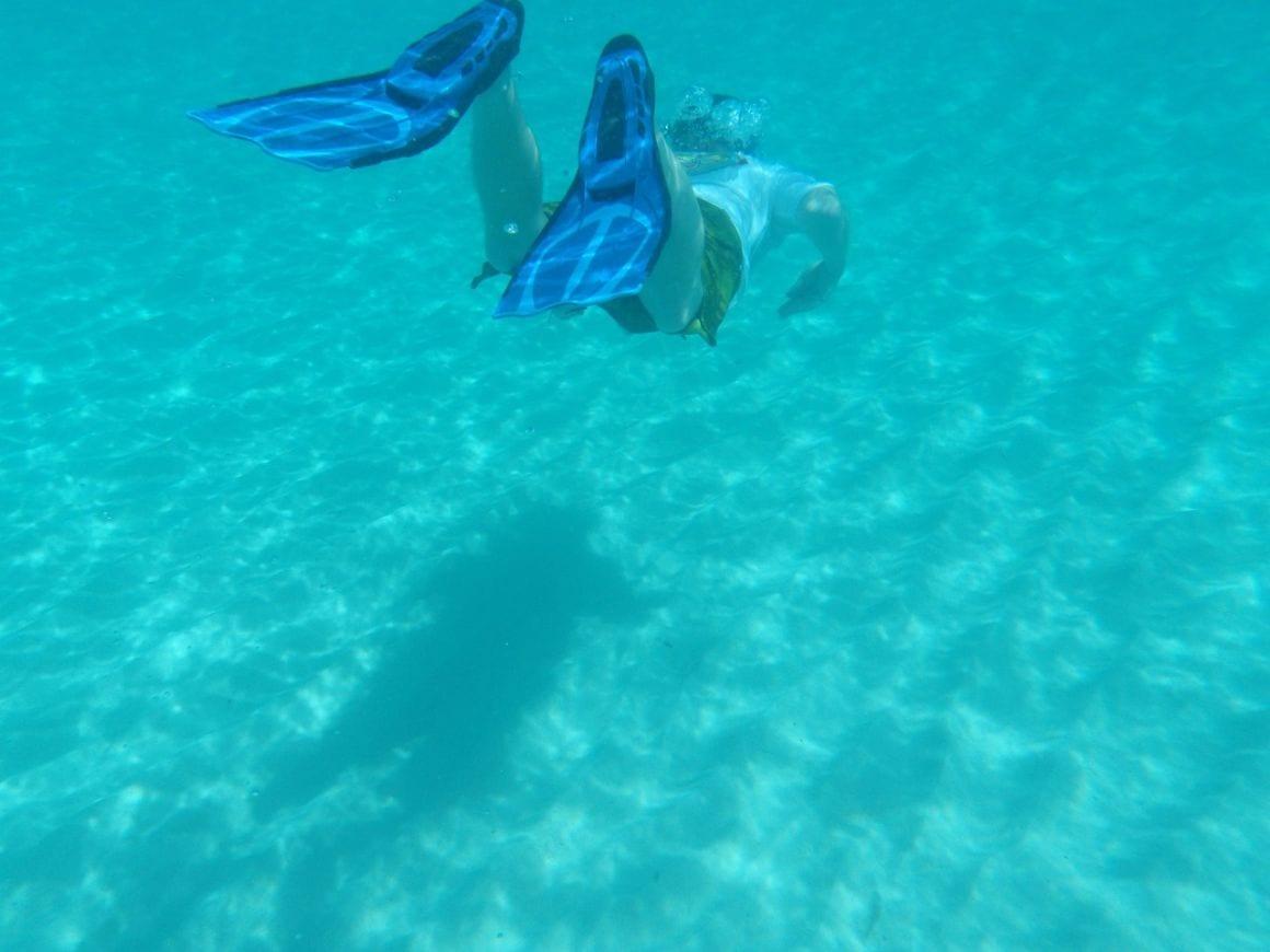 Anguilla Snorkel