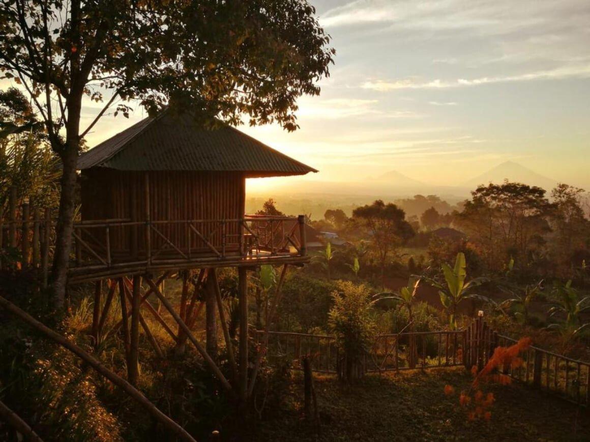 Bali Treehouse Pelangi