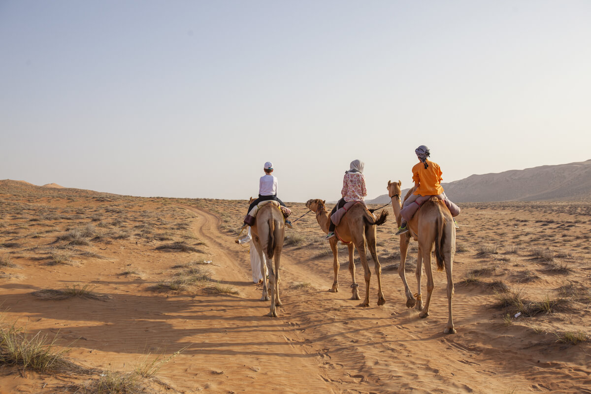 Omani kids on camels go sightseeing in the desert
